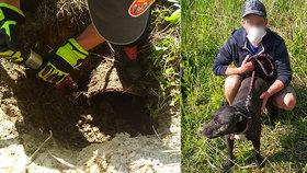 Pes zaběhl do roury a nemohl ven: Hasiči se k němu museli prokopat