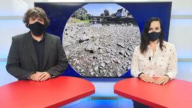 Vysílali jsme: Extrémní sucho v Česku, vody dál ubývá. Naděje v nedohlednu?