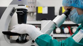 Koronavirus mutuje? Současná verze je dle vědců nakažlivější než ta čínská