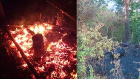 Vyjeli k požáru lesního posedu: Ve spáleništi ležela mrtvola muže