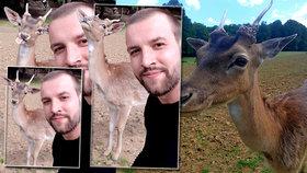 Srnec králem sociálních sítí: Takhle se pózuje, ukázal Tomášovi, který chtěl selfie!