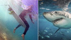 Na surfaře (†60) zaútočil třímetrový žralok: Muž zranění podlehl