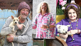 Holubová, Polívka a Chýlková točí o psech a s nimi: V hlavni roli Gump - ten, který naučil lidi žít