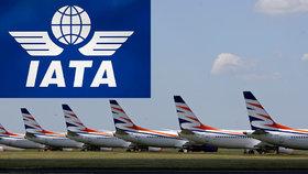 Za pomoc českým aerolinkám se přimlouvá mezinárodní sdružení: Jde o práci pro 30 tisíc lidí