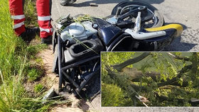 V Liberci zemřel motocyklista (†47): Zřejmě na něj spadl strom!