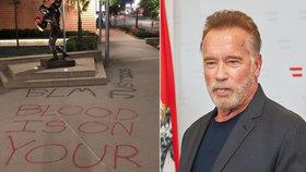 Sochu Schwarzeneggera poničili demonstranti. Prý je také rasista