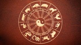 Horoskop na další týden: Krysy si zaflirtují, Buvoli dostanou zajímavé pracovní nabídky