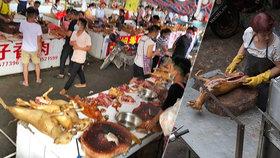 Šokující fotografie z psího trhu: Prodejci jim řežou nohy zaživa, popsala hrůzu aktivistka