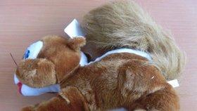 Úřady varují rodiče před nebezpečnou veverkou: Roztomilý plyšák pelichá a obsahuje jedy!