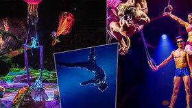 Cirque du Soleil zbankrotoval kvůli koronaviru: Akrobaté mají 25miliardový dluh!