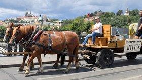 Netradiční podívaná v centru Prahy: 1,5tunový kolos převezli koně, socha mířila na výstavu v Rudolfinu