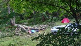 Českou turistku (†29) v Bulharsku zabil strom! Spadl na její stan během bouře