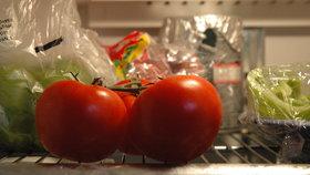 Patří rajčata do lednice? Vědci našli odpověď a zelináři přidali několik rad