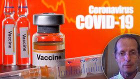 Vakcína bude připravená do roka, míní britský vědec. Z Česka zaznělo důrazné varování