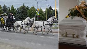 Honosný romský pohřeb: Čtyřspřeží s bělouši, cimbálovka a 200 smutečních hostů!