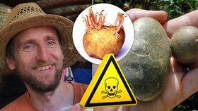 Po jedovatých cuketách pozor i na brambory: Toxin v nich způsobuje zástavu dechu! Odborník řekl, čeho se vyvarovat