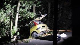 Tragédie u Neveklova: Řidič (†35) sjel ze silnice a rozstřelil auto o strom! Na místě zemřel
