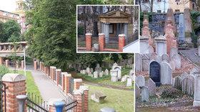 Utajená krása mezi činžáky: Židovský hřbitov na Žižkově málem zničili komunisté