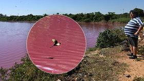 Laguna se zničehonic zbarvila narůžovo: Místní lidé nad tím kroutí hlavou