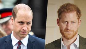 A je to venku! 4 slova, kterými William navždy naštval Harryho!