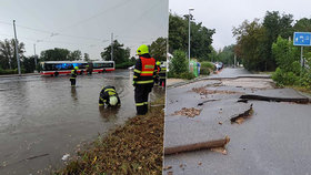 Popadané stromy, roztrhaný chodník, zastavené vlaky: Prahu trápil vodní živel a hromobití