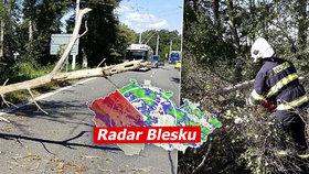Bouře v Česku smetla skákací hrad v parku, klučík (3) je vážně zraněný. Sledujte radar Blesku