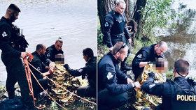 Vteřiny od zbytečné tragédie! Sebevraha strhl proud Vltavy, policisté ho křísili z bezvědomí