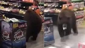 """Hladový medvěd zavítal do supermarketu: Odešel s jogurtem, už předtím """"nakoupil"""" chipsy"""
