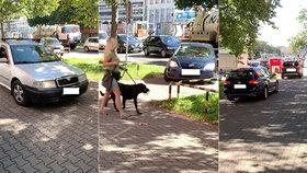 Oprsklé chování řidičů v Brně: Vyzráli na kolony, autem jezdí po chodníku! Kličkují mezi lidmi