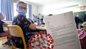 """""""Zakazuji dceři nosit roušku."""" Rodiče v ČR brojí proti ochraně ve školách, ministerstvo má vzkaz"""