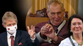 Vystrčil nesmí na Hrad, Němcová zmínila Zemanův konec. Politolog: Prezident kádruje