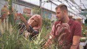 Hobby s Markétou Mayerovou: Okrasné trávy jsou efektní ozdobou zahrady i balkonu