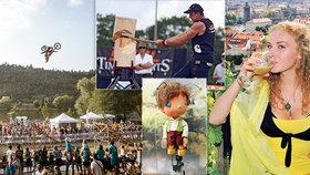 Tipy na víkend: Začínají vinobraní! Zajděte na festival sportů, soutěž dřevorubců i za Broučky