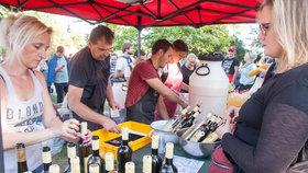 Oslavy babího léta a burčáku budou: Grébovka ožije vinobraním