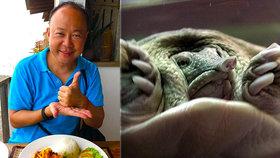 Diplomat snědl lahůdku z ohrožené želvy. Ostudné, pustili se lidé do velvyslance
