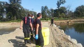 Do řeky Bečvy unikla neznámá látka. Uhynulo velké množství ryb