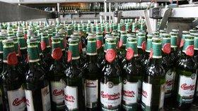 """Další rána pro pivaře: Po Prazdroji zdraží """"lahváče"""" i Budvar"""