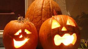 """Halloween ve Vinoři: Dlabání dýní v """"Dlabačově"""" upoutá stezkou odvahy i ohňostrojem"""