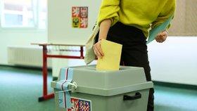 Překope Ústavní soud volby? V říjnu může být ve Sněmovně všechno jinak