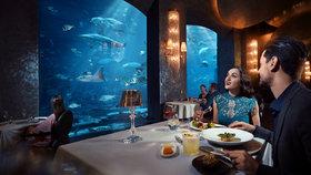 Luxusní kulinářské zážitky, ale i skryté pouliční skvosty – obojí je Dubaj!