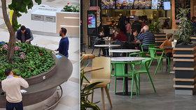 Vynalézaví zákazníci ve fast foodech: Jídlo si koupí s sebou, pak hodují u stolů a květináčů