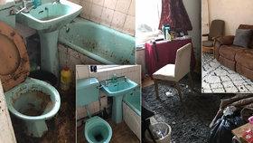 Dům jako z hororu: Nechutné špinavé pokoje uklízečky proměnily k nepoznání