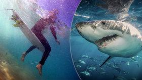 Krvelačný žralok napadl dítě! Chlapce (13) pokousal na noze
