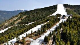 Kralický Sněžník: Království zimních sportů v Dolní Moravě, na prosluněném Kraličáku či v nádherném Paprsku