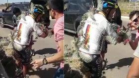 Cyklista vjel do výmolu a skončil v trnech: Vypadal jako chodící kaktus, vyndali mu tisíce bodlinek