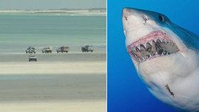 Žralok brutálně potrhal muže u oblíbené pláže: Když ho vytáhli z krvavé vody, zemřel