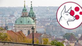 Praha má nejnižší skóre rizika. PES ale jen tak neklesne, záleží na situaci v celé ČR