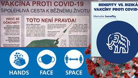Česko ve skluzu v kampani na očkování: Slováci to zvládají líp. Vytáhli mamuta a komára