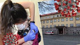 Až 900 očkovaných denně: Nemocnice Na Františku nabídne vakcíny pro celou Prahu, pomoci mají podnikatelé