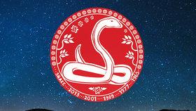 Nový čínský rok pro znamení Hada: Vytvořte si strategii a nenechte se odradit nepříznivými energiemi